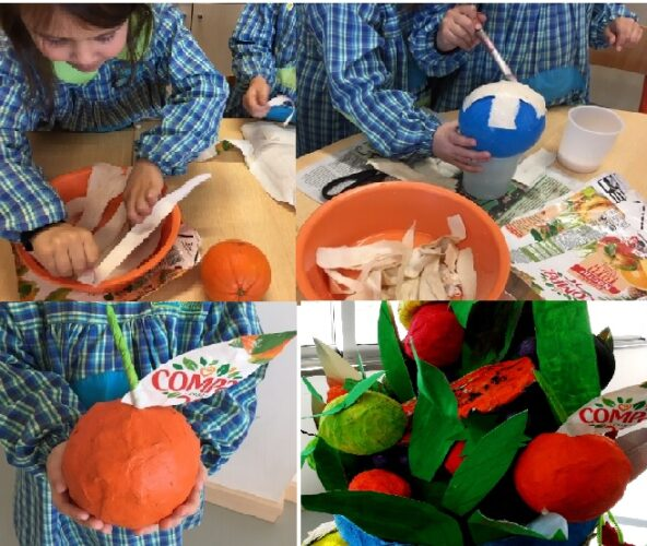 3- Elaboração dos frutos, neste caso, uma laranja.