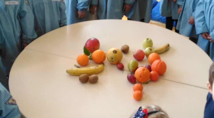 Frutas preferidas das crianças, trazidas de casa e que no final deram lugar a um delicioso batido.