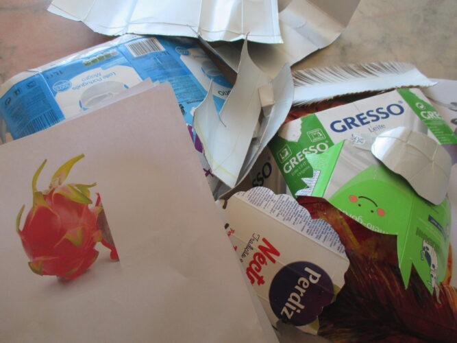 Seleção do fruto e dos materiais para a construção da máscara